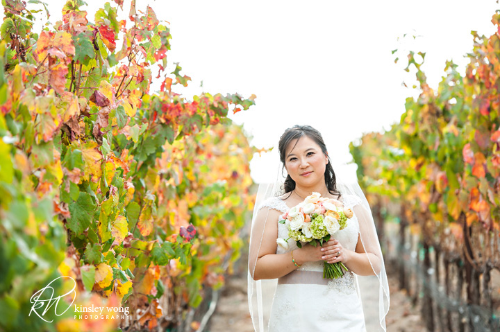 bride at the meritage vineyard