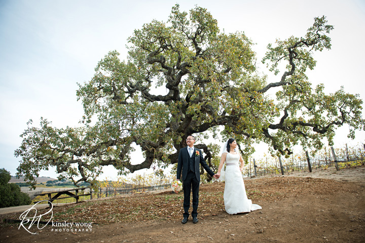 bride and groom in front of a cool looking tree