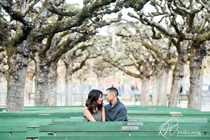 Golden Gate Park bench engagement